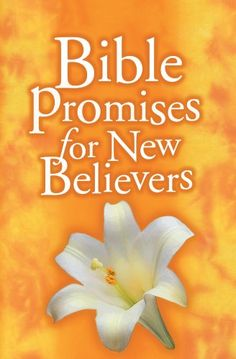 Bible Promise books for $0.99 each... #kids #Scripture #moms #dads #teens