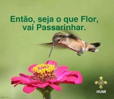 Blogue do Lado Avesso: Sempre em frente...