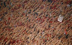 Bayern Munich's supporters cheer during their Champions League football match against AS Roma at the Olympic stadium in Rome