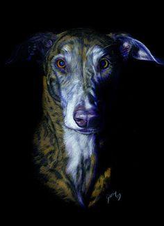Portraits animaliers à l'aquarelle ou aux pastels, peintures, croquis - Pastels or watercolour pets portraits, paintings, sketches