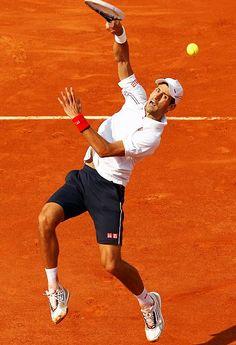 Novak Djokovic... I wanted to see him so bad at the Davis Cup!