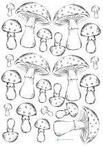 Karte_Fliegenpilz_Glückspilz_basteln_card_mushroom_toadstool_handmade_craft          Printable Freebie