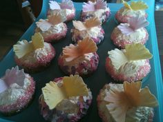 Butterfly Cupcakes 1/2