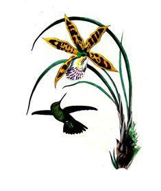#Colibri (Panychlora Aniclae) fait partie de la grande famille des espèces de #colibri, nommé ainsi à cause de leur petite taille et leurs battements d'#ailes rapides. Ce sont les plus petits #oiseaux au monde, s'alimentant de petits insectes et de nectar de fleurs. Ici une variété d'#orchidée #numelyo #bestiaire #volatile