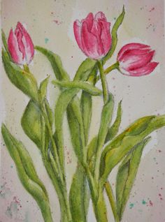 Watercolors by Joan 2: Pink Tulips