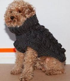 Votre chien déteste les frimas, il est fragile, il est mignon, il est Finlandais, il est moyennement waterproof, il adore les sports d'hiver, il est branché, il est chic….  Toutes sortes de raisons pour lesquelles vous voudrez lui procurer un manteau élégant qui ressemblera à un de vos pulls préférés. Tricoté à la main, laine bio!  Crédits Photo AHA LIFE