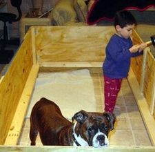 How to make a whelping Box for my dog and her pups.