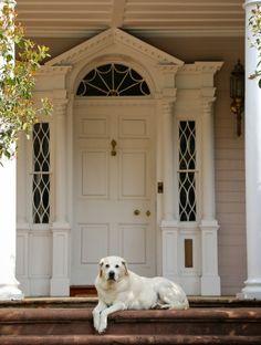 "awonderfulpalmettolife: ""Charleston daily photo """