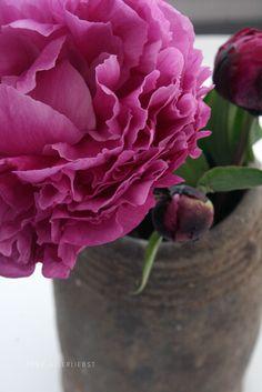 My favorite flower   von herz-allerliebst
