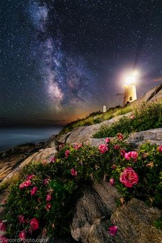 """The Roses of Pemaquid Point"" ~ by Jon Secord ~ Miks' Pics ""Light Houses"" board @ http://www.pinterest.com/msmgish/light-houses/"