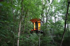 Wouldn't mind spending time in this tree top treehouse!