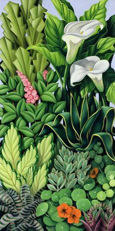 Catherine Abel -  Foliage