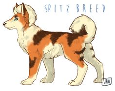 Spitz Growlithe~ . These pokemon are strong, intelligent and hard working. They have a tendency to pick one human and stay completely loyal to them. Their fur is incredibly thick and with their fire ability they are used frequently in northern areas, either as companion pokemon to travellers or rescue pokemon. The spitz growlithe is easily bored and requires frequent play, several miles walking each day, and sheds a lot of fur. They are not recommended for inexperienced pokemon owners.