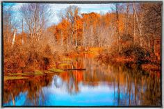 A scenic creek bed located near my home. I shot this simply because the water was so still and offered me a reflection.