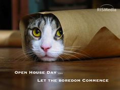 Don't let your open houses be unproductive or boring -  get out & meet the neighbors - network network network!
