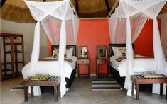 Lodge in the Hwange National Park area | Byolife.co.zw Bed And Breakfast, Lodges, Teak, National Parks, Hotels, House Styles, Home Decor, Cabins, Decoration Home