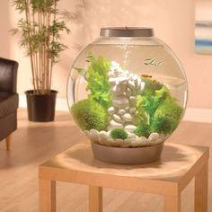 Internet das Coisas!!!: Aquarium LED Light