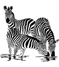 http://www.devinilos.es/2452-thickbox_default/vinilo-cebras-bebiendo.jpg