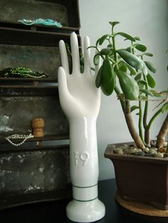 I love the contrast of the glove mold with the green plant!!