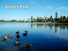 STANLEY PARK: Con un área de 1.000 acres, el parque es un santuario en el centro de la ciudad, que ofrece a los habitantes de la ciudad y a sus visitantes una gran variedad de actividades bajo techo y al aire libre. Para más info, haz click aquí: http://vancouver.ca/parks/parks/stanley/