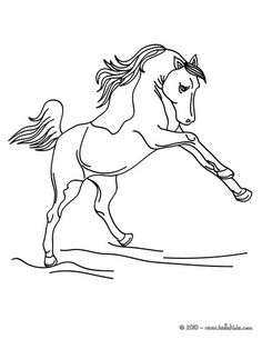 Wild horse coloring page. Let your imagination soar and color this Wild horse coloring page with the colors of your choice. Print out more coloring pages . Farm Animal Coloring Pages, Colouring Pages, Coloring Sheets, Coloring Pages For Kids, Adult Coloring, Painted Horses, Free Horses, Wild Horses, Watercolor Horse