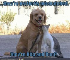 They're perfectly mismatched, they're Rita and Runt!