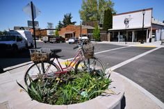 """An old bicycle adorns a planter on a street corner on Echo's Main Street on Wednesday. Echo regularly wins awards from America in Bloom and Tree City USA. """"We've played on that and tried to build up community pride,"""" City Manager Diane Berry said."""