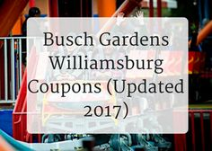 Busch Gardens Williamsburg Coupons  Find Busch Gardens Williamsburg Discount  Tickets And Busch Gardens Promo Codes From A Local Who Knows!