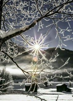 Icy sunrise!