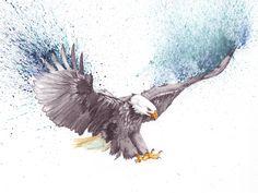 Bald eagle drawing #drawing #illustration #watercolor