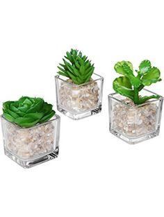 Modern Clear Glass Planter Pot Faux Plants / Mini Potted Artificial Succulent Plants, Set of 3 - MyGift® ❤ MyGift