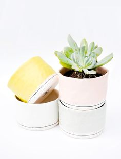 Peach, Yellow, White & Sage Planters- such pretty colors together!