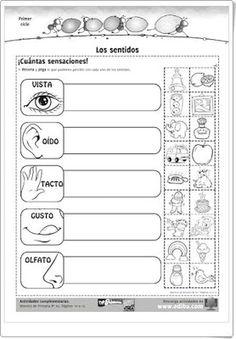 sentidos Black Haircut Styles new style black haircuts Senses Preschool, Preschool Spanish, Elementary Spanish, Spanish Activities, Spanish Classroom, Teaching Spanish, Preschool Activities, Elementary Schools, Teaching Resources