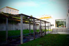 Biblioteca Municipal de Vieira do Minho (Jardim)