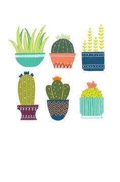 4 x 6 Mini Print Cactus Illustration - Drawing Mini Cactus, Cactus Art, Cactus Flower, Flower Bookey, Flower Film, Flower Pots, Flowers, Kaktus Illustration, Cute Illustration
