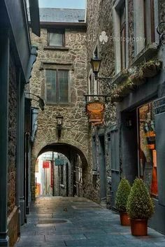 Medieval town of Kilkenny, County Kilkenny, Ireland. I want to live in a medieval town please. Oh The Places You'll Go, Places To Travel, Places To Visit, Travel Destinations, Ireland Vacation, Ireland Travel, Ireland Pubs, Cork Ireland, Medieval Town