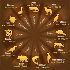 Wow...My Sign...Otter...Is Completely Me!!  AND SO FUNNY THAT MY HUSBANDS FAVORITE WILD ANIMAL IS THE OTTER...GO FIGURE.