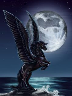BlackJack the pegasus from Percy Jackson
