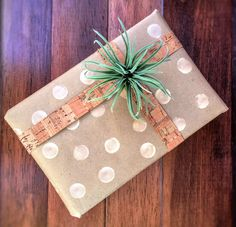 Modern Spring Gift Wrapping with Flowers, Plants, Succulents, and Seagulls   The Craine's Nest