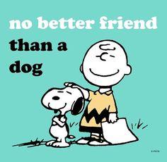 No better friend than a dog