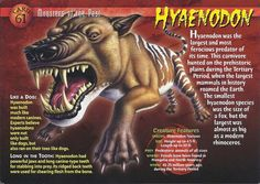 Name: Hyaenodon Category: Monsters of the Past Card Number: 61 Front: Hyaenodon Monsters of the Past Card 61 front Back: Hyaenodon Monsters of the Past Card 61 back Trading Card: Hyaenodon Prehistoric World, Prehistoric Creatures, Mythological Creatures, Wild Creatures, Fantasy Creatures, Mythical Creatures, Creepy Facts, Fun Facts, Letters