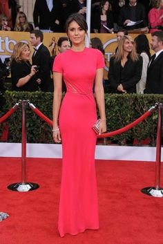 Nina Dobrev won plaudits for this simple but elegant short-sleeved rose Elie Saab gown.