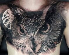 20 Staggering Owl Tattoos Representing Mystery and Wisdom Owl tattoos are always less about you and your personality and more about your ideals or your interactions with the world around you. These mystical animals…