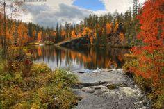 Finnish Lapland in the autumn Lappland, City Landscape, Closer To Nature, Photo Art, Natural Beauty, Tourism, Beautiful Places, Album, River