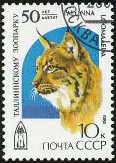 CCCP 1989 Cat Stamps