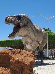 Tyrannosaurus'Scotty' size the unit Les Reptiles, Jurassic Park World, Dinosaur Art, Tyrannosaurus Rex, Prehistoric Animals, Fossils, Fantasy Art, Places To Go, Lion Sculpture