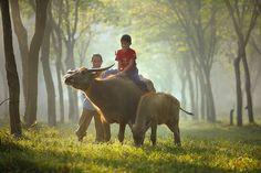 Fotografías de la vida rural de Indonesia    Serie de fotos a través de Indonesia por el fotógrafo Taufik Sudjatnika que capta la vida cotidiana de las personas que viven en zonas rurales.