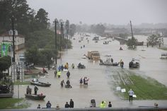 People walk down a flooded street as they evacuate their homes after the area was inundated with flooding from Hurricane Harvey on August 2017 in Houston, Texas. Houston Flooding, Houston Police, Houston Tx, Houston Street, Digital Trends, Tropical, Natural Disasters, Climate Change, Fotografia