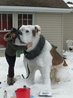 Do a double take look at this snowman!