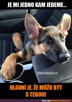 Funny pictures about True Dog Love. Oh, and cool pics about True Dog Love. Also, True Dog Love photos. Cute Puppies, Dogs And Puppies, Cute Dogs, Doggies, Terrier Puppies, Corgi Puppies, Bull Terriers, Animals And Pets, Funny Animals